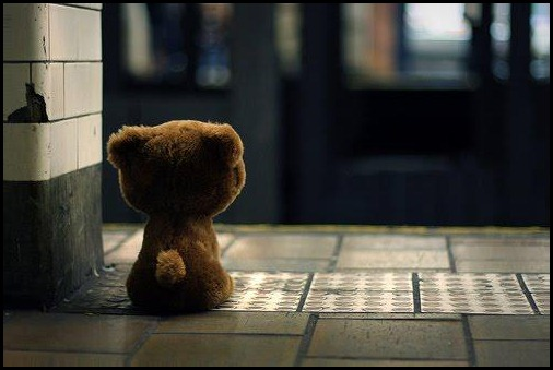 lonely_bear